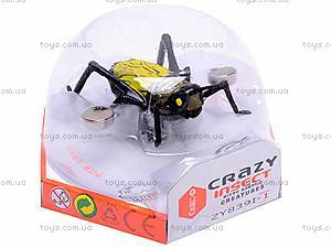 Сверчок «Crazy insect», ZY839I-1, фото