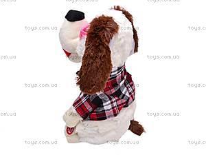 Танцующая собака, 2611, купить