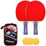 Теннис настольный (2 ракетки,3 мячика) в чехле , TT2121, доставка