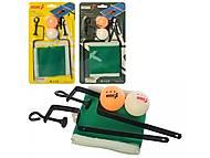 Шарики для пинг-понга 2шт + сетка, 2 вида, MS3198, іграшки