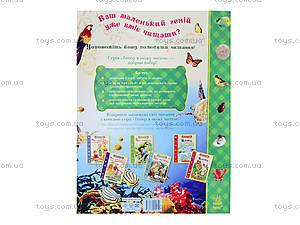 Книга для детей «Про животных. От колибри до кита», С218004У, купить