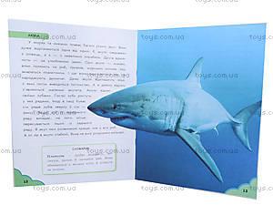 Книга для детей «Про животных. От колибри до кита», С218004У, фото