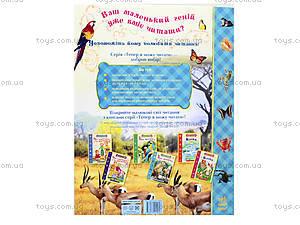 Детская книга «О животных. От мышки до слона», С218001У, купить