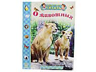 Книга для детей «О животных. От мышки до слона», С218002Р, купить