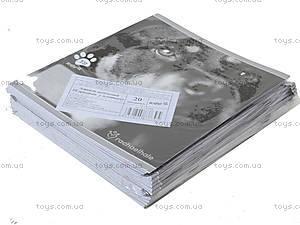 Тетрадь клетка, 18 листов, R14-236K, купить