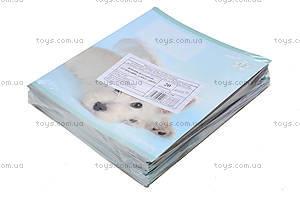 Тетрадь косая, 12 листов, R14-235K, фото