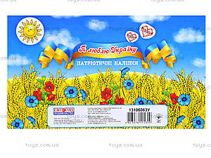 Тетрадь для детей с патриотическими наклейками, 546613106063У, игрушки