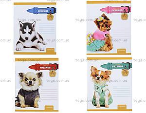 Школьная тетрадь в клетку, разные варианты, Ц262049У, интернет магазин22 игрушки Украина