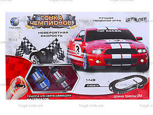 Детский трек «Гонка чемпионов», TR-03, toys.com.ua