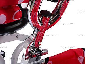 Трехколесный велосипед с цветочками Lexus, M0449-3, детский