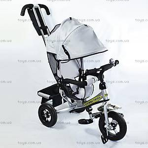 Трехколесный велосипед, серебристый, BT-CT-0004 SI