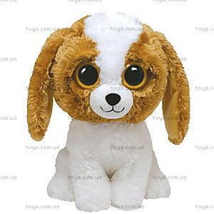 Игрушечный щенок Cookie серии Beanie Boo's, 36906
