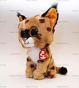 Мягкая игрушка «Рысь Buckwheat» серии Beanie Boo's, 37055, фото