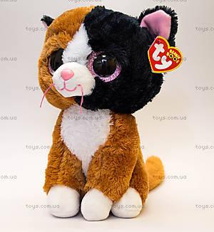 Мягкая игрушка «Котенок Tauri» серии Beanie Boo's, 37064, фото
