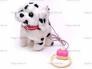 Уценка Собака на поводке, 9101E1