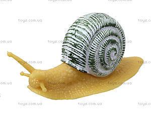 Улитка-тянучка «Гонконг», 6 штук, A141DB, цена