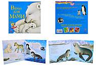 Детская книжка с иллюстрациями «Стихи для мамы», С505007У, фото