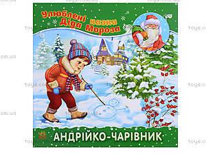 Сказки Деда Мороза «Андрюша-волшебник», Ч573004У, цена