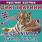 """Умные карточки """"Дикие животные"""", F00020498, купить"""