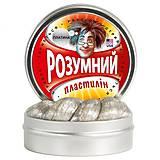 Умный пластилин «Платина» Thinking Putty, ti22002, цена