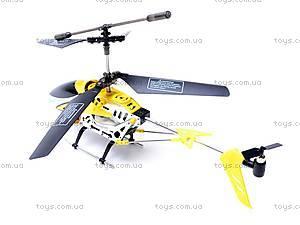 Управляемый вертолет, P717, фото