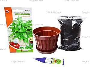 Увлекательная ботаника «Мелисса», 0366, цена