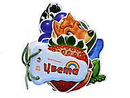 Детские загадки «Цвета», М248008РМ13968Р, фото