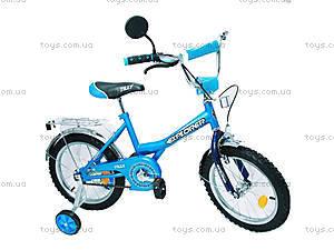Велосипед Explorer, голубой с синим, BT-CB-0039, фото