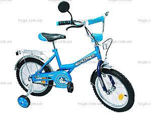 Велосипед Explorer, голубой с синим, BT-CB-0039