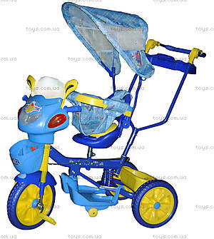 Велосипед Travel Trike, сине-зеленый, WS828A-3D