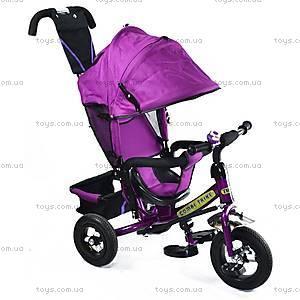Велосипед трехколесный с крышей, фиолетовый, BT-CT-0004 PU