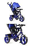 Детский велосипед Best Trike (электрик), 5700-5010, отзывы
