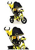 Велосипед «Best Trike» трёхколёсный (желтый), 7700В-6120