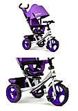 Велосипед «Best Trike» 3 колеса (сиреневый), 5700-3870, купить