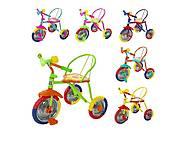 Велосипед трехколесный TILLY TRIKE, цвета в ассортименте, T-317, отзывы