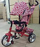 Велосипед трехколесный TILLY ZOO-TRIKE (DARK RED 1), T-342* DARK RED, отзывы