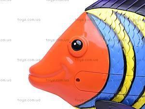 Водоплавающая рыбка, 3301D, купить