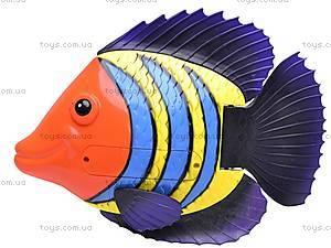 Водоплавающая рыбка, 3301D, отзывы