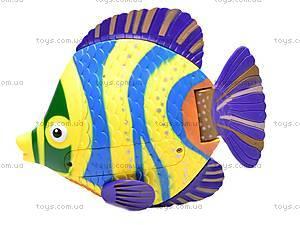 Водоплавающая рыбка Funny Swimers, 3303D
