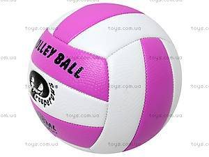 Волейбольный мяч, BT-VB-0017