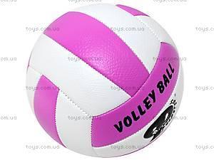 Волейбольный мяч, BT-VB-0017, фото