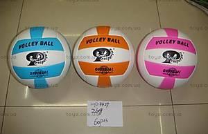 Волейбольный мяч, BT-VB-0017, купить