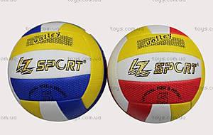 Волейбольный мяч, цвет на выбор, BT-VB-0039, купить
