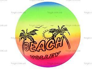 Волейбольный мяч «Цветной», BT-PB-0040, фото