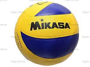 Волейбольный мяч Mikasa, W02-155