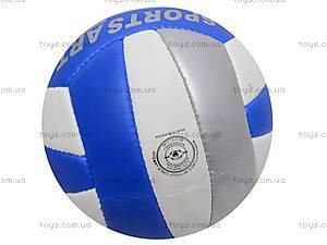 Волейбольный мяч Professional, PROFESSIONAL, купить