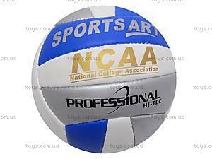 Волейбольный мяч Professional, PROFESSIONAL