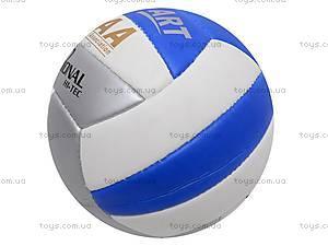 Волейбольный мяч Professional, PROFESSIONAL, фото