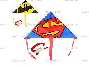 Воздушный змей Бэтмен и Супермен,
