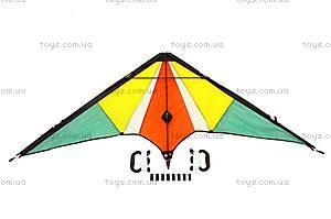 Воздушный змей, большой, 167С